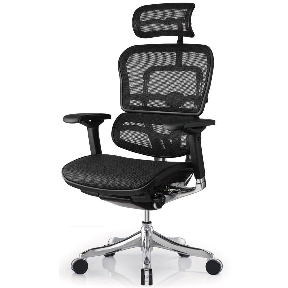 Astonishing Ergo Elite Mesh Swivel Chair With Headrest Home Interior And Landscaping Ymoonbapapsignezvosmurscom