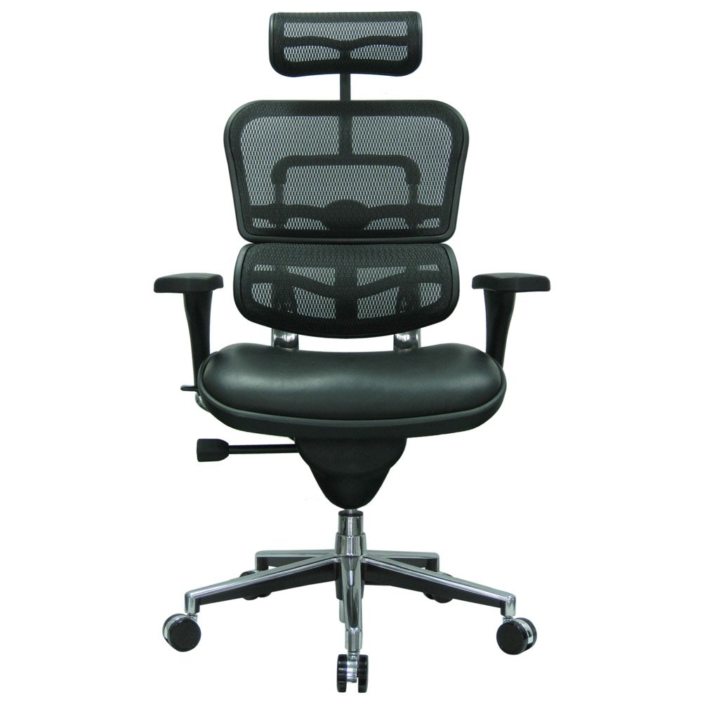 modern ergohuman leather leather seat swivel chair with headrest mesh back black leather zuri. Black Bedroom Furniture Sets. Home Design Ideas