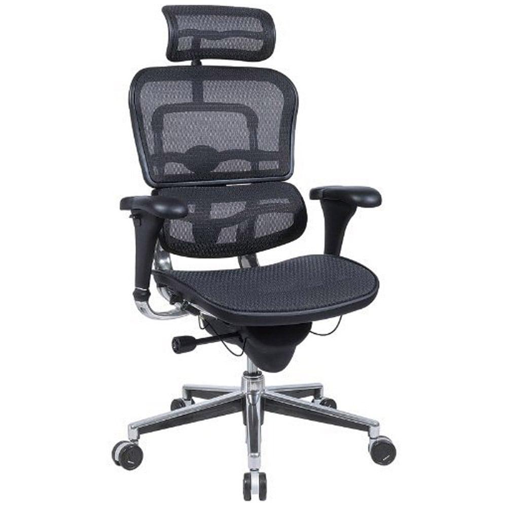 Ergo Human Mesh Swivel Chair With Headrest California Mesh