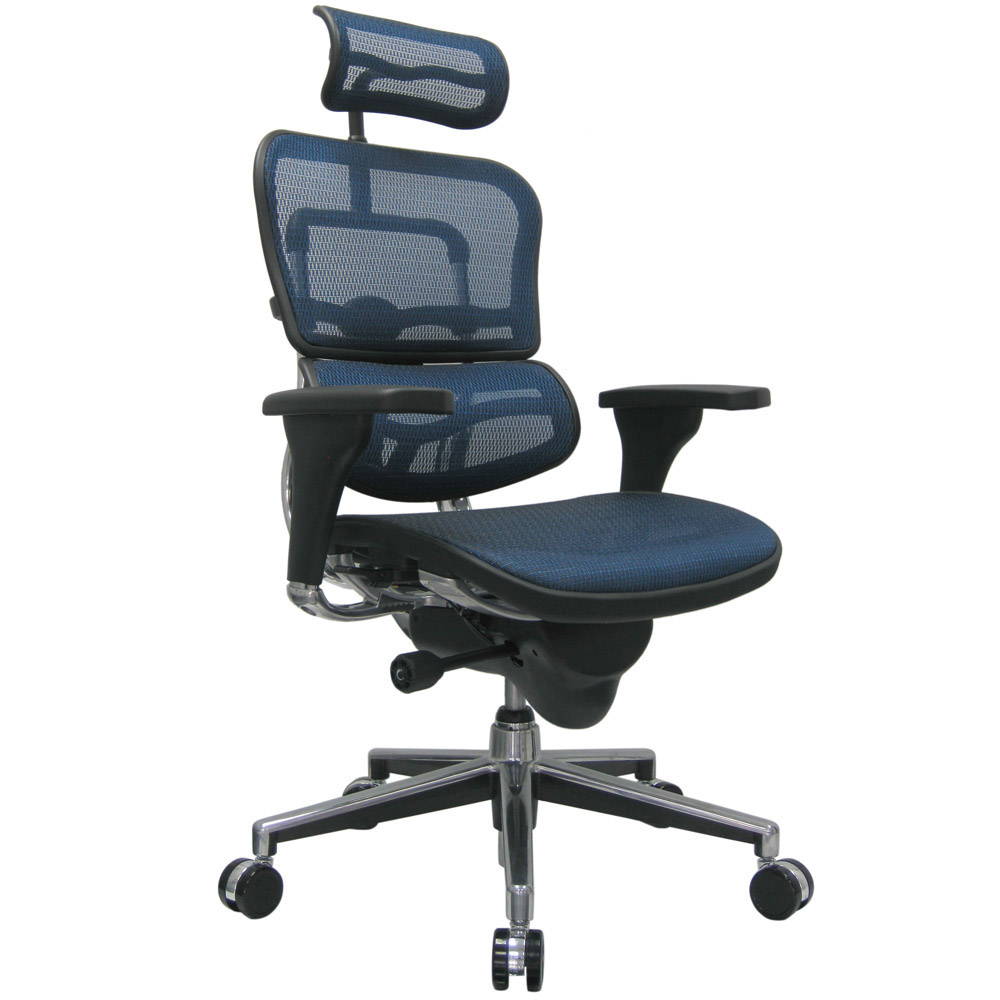Ergo Human Mesh Swivel Chair ...
