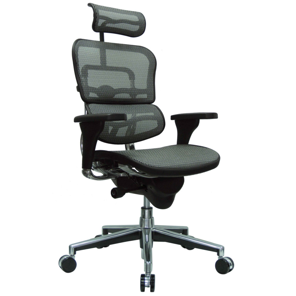 Ergo Human Mesh Swivel Chair With Headrest Zuri Furniture