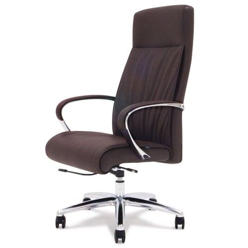 Beau Forbes Genuine Leather Aluminum Base High Back Executive Chair | Zuri  Furniture