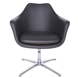 http://www.zurifurniture.com/common/images/products/thumb/brizion-lounge-chair-dark-gray-polished-aluminum.jpg